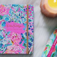 Find Your Perfect Planner 2017: Lilly Pulitzer Agenda